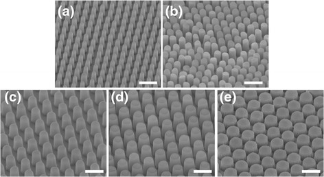 Scanning electron micrographs of polymeric nanopillar arrays made of UV-curable adhesive. The diameters of the nanopillars are (a) 214 ± 13 nm, (b) 322 ± 16 nm, (c) 425 ± 17 nm, (d) 500 ± 19 nm, and (e) 684 ± 17 nm. Scale bars are 1 μm.