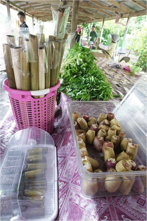 Presentation of glutinous rice snacks prepared inside traditional packaging in Sarawak, Malaysia. At the Kampung Duyoh roadsite market, sticky rice was prepared inside Nepenthes ampullaria pitchers (right) and within the leaf and culm of bamboo (Bambusa spp.) (left).