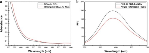 a Absorption spectra of BSA-Au NCs (0.1× dilution) in the absence and presence of 10 µM rifampicin. b Fluorescence emission spectra (excitation wavelength at 480 nm) of BSA-Au NCs (0.1× dilution) in the absence and presence of 10 µM rifampicin.