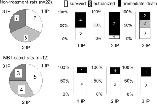 Immediate outcome in keeping with the number of intra-peritoneal NaHS injections required to produce a coma.There was no difference in the mortality whether 1, 2 or 3 injections were administered. Of note is that the 2 rats that were unable to swim in the H2S groups belonged to the rats that received 3 IP injections.