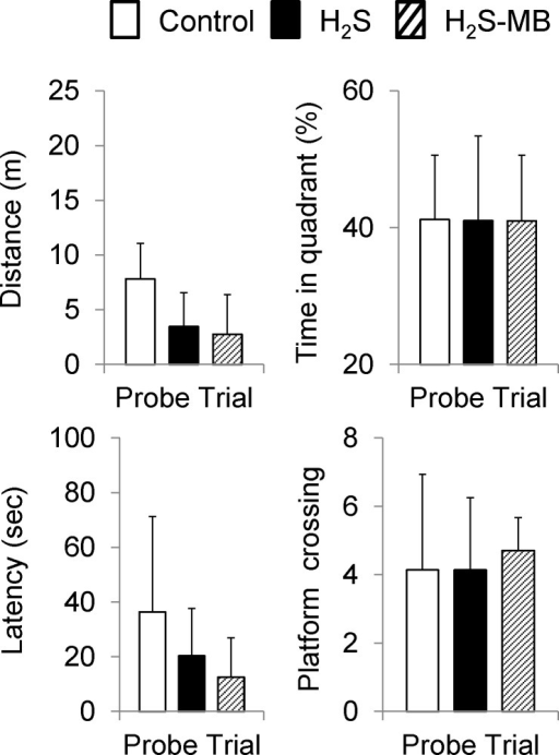Probe trials.Average latency, distance, time spent in the platform quadrant, and number platform crossing are displayed during the probe trial. No significant difference was observed between the 3 groups. Values are shown as mean ± SD.