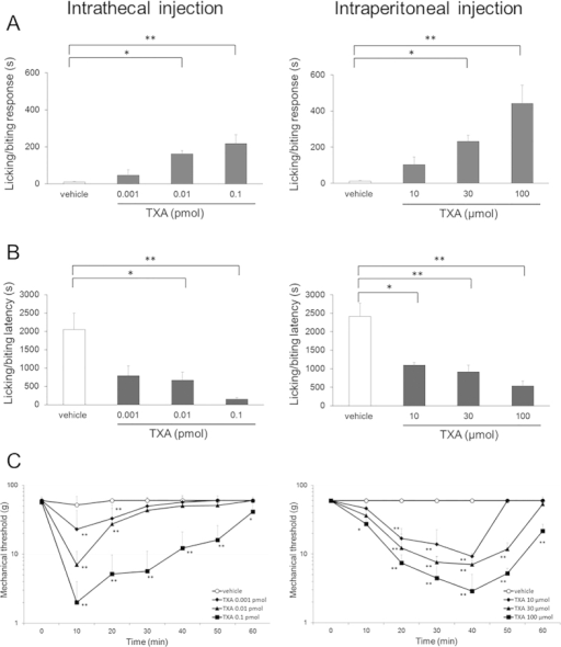 Assessment of behavioral response to intrathecal and intraperitoneal injection of tranexamic acid (TXA).(A) Total time devoted to licking/biting responses during a 60-min observation period is increased in a concentration-dependent manner by intrathecal or intraperitoneal injection of TXA. (B) The latency to the start of the behavior is shortened in a concentration-dependent manner by intrathecal or intraperitoneal injection of TXA. (C) Mechanical thresholds for paw withdrawal in response to von Frey stimulation are significantly reduced in a concentration-dependent manner by intrathecal or intraperitoneal injection of TXA. Concentrations of intrathecal or intraperitoneal injected TXA range from 0.001 to 0.1 pmol and from 10 to 100 μmol, respectively. The data are given as mean ± SD. In each dose group, n = 5; *P < 0.05, **P < 0.01 by one or two-way ANOVA.