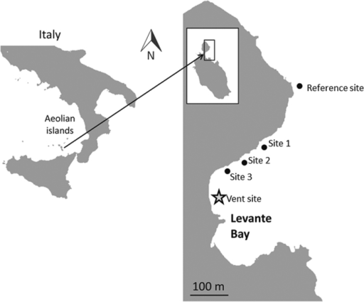 Map of sites sampled along the shoreline of Levante Bay, Vulcano Island Italy.Figure modified from Horwitz et al.5.