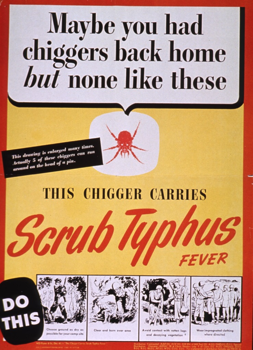 <p>Predominantly yellow poster with black and dark orange lettering.  Initial title phrase at top of poster.  Visual image in upper portion of poster is an illustration of a chigger or mite.  Caption appears on left side of poster near illustration.  Remaining title words below illustration.  A four-panel series of illustrations near the bottom of the poster shows some steps to take to avoid scrub typhus.  Steps include finding dry ground for camp, clearing and burning the area, avoiding contact with decaying logs and plants, and wearing impregnated clothing.  Publisher information at bottom of poster.</p>
