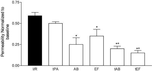 The permeability (normalized to baseline) during reperfusion in the group treated with saline (I/R) and those treated with abiciximab (AB), eptifibatide (EF), t-PA (tPA) and abiciximab plus t-PA (tAB) or eptifibatide plus t-PA (tEF), respectively. See text for details. Values are means ± SD. *p < 0.05 AB, EF, tAB and tEF vs. I/R and t-PA; ° p < 0.05 tAB and tEF vs.AB and EF.