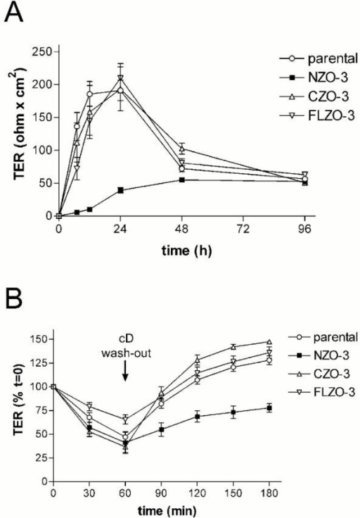 Expression of NZO-3 delays TJ formation. (A) NZO-3 expression in MDCK cells subjected to a calcium switch delays reestablishment of TER. Filter-grown confluent monolayers of untransfected parental cells or MDCK cell lines stably expressing NZO-3, CZO-3, or FLZO-3 were incubated in calcium-free media for ∼15 h to disrupt intercellular junctions and then switched to media containing 1.8 mM calcium at t = 0 to induce synchronous assembly of intercellular junctions. TER was measured over 96 h after calcium switch. CZO-3 and FLZO-3 expressing cell lines show TER recovery dynamics similar to parental cells. NZO-3–expressing cells display a delay in TER recovery, but reach the same TER as the other cell lines by 48–96 h. (B) Expression of NZO-3 delays TER recovery in MDCK cells after cD treatment. cD was added to filter-grown confluent monolayers at t = 0 and then washed out after 60 min. TER measurements were taken every 30 min to monitor TJ breakdown and reformation. TER for each cell line is expressed as percentages of the values at t = 0. After 60 min of cD treatment, all cell lines exhibit a significant drop in TER. After cD washout, MDCK/CZO-3, MDCK/FLZO-3 and parental cells recover TER to values greater than t = 0, whereas MDCK/NZO-3 cells do not fully recover TER in the duration of the experiment.