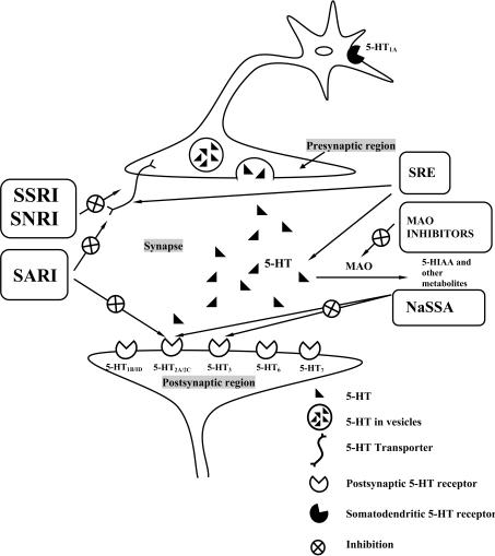 schematic representation of different antidepressant me