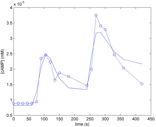 Result of parameter estimation of the Complete cAMP Model. The blue dotted trace represents cAMP data from [35], and the solid blue trace represents cAMP levels computed by the model.