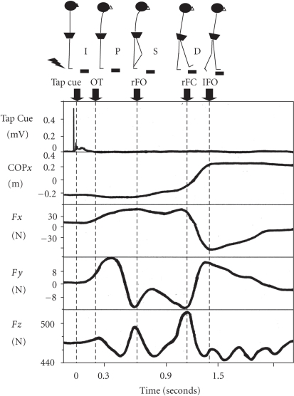 An example of step response data. From top to bottom: Tap cue on back of heel; COPx = Mediolateral center of pressure; Fx = Ground reaction force in lateral direction; Fy = Ground reaction force in anteroposterior direction; Fz = Vertical ground reaction force. The stepping task was divided into four phases: (1) the initiation phase (I) was calculated from the tap cue to the onset (OT); (2) the preparatory phase (P) was calculated from OT to foot-off for the right leg (rFO); (3) the swing phase (S) was calculated from rFO to foot-contact for the right leg (rFC); (4) the double-stance stance phase (D) was calculated from rFC to foot-off for the left leg (lFO).