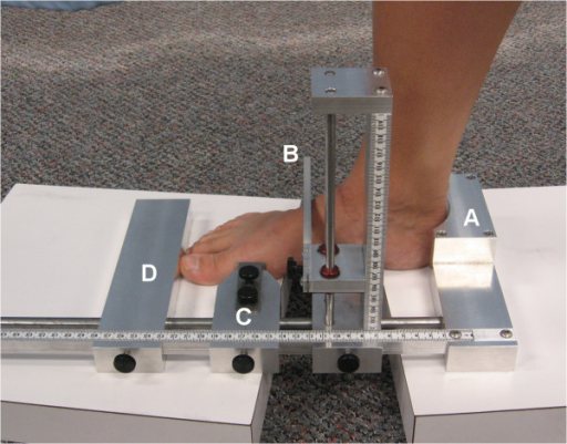 The Arch height index measurement device (AHIMS). The heel is placed against the heel cup (A) and the sliding callipers D and C are aligned against the distal phalanx and first metatarsal head respectively. A third calliper (B) is lowered to the dorsal arch at 50% of the FL.