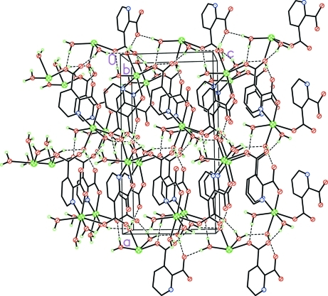 A view along the b axis of the crystal packing of the title compound [the hydrogen bonds are shown as dashed lines and the hydrogen atoms of the pyridine-2,3-dicarboxylates ligands are omitted for clarity].