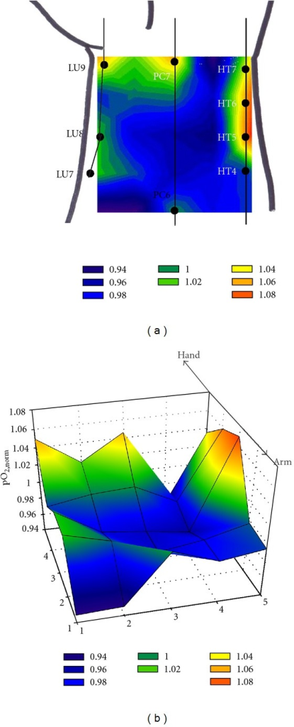 (a) 2-D and (b) 3-D illustration for the color-coded contour plots for another typical example of the two-dimensional oxygen measurement over the wrist skin. A linear change in the pO2,norm⁡ values was assumed between two adjacent points.