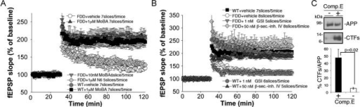 MoBA and a β-secretase inhibitor rescue the LTP deficit of FDDKI mice—a GSI does notSixty-minutes perfusion with MoBA reverses LTP impairment in FDDKI mice [WT to FDDKI: F(1,12) = 12.372, p = 0.004; WT to FDDKI + MoBA 1 µM: F(1,12) = 0.012, p = 0.914; WT to FDDKI + MoBA 10 nM: F(1,11) = 0.202, p = 0.662; FDDKI to FDDKI + MoBA 1 µM: F(1,12) = (10.078), p = 0.006; FDDKI to FDDKI + MoBA 10 nM: F(1,11) = 15.049, p = 0.008]. N6 does not rescue the LTP deficit [FDDKI to FDDKI + N6 1 µM: F(1,10) = 0.053, p = 0.821]. MoBA does not alter LTP of WT mice [WT to WT + MoBA 1 µM: F(1,12) = 0.361, p = 0.560].β-secretase-inhibitor IV (50 nM; IC50 = 15 nM) rescues LTP impairment in FDDKI mice [FDDKI to FDDKI + β-secretase-inhibitor IV: F(1,14) = 12.258, p = 0.004; WT to FDDKI: F(1,13) = 12.272, p = 0.004; WT to FDDKI + β-secretase-inhibitor IV: F(1,13) = 0.604, p = 0.451]. There was a trend towards increased LTP in inhibitor IV-treated WT and FDDKI samples versus vehicle-treated WT controls, but this difference was not statistically significant. Compound-E (1nM; IC50 = 300/240pM) does not rescue the LTP defect in FDDKI samples [FDDKI to FDDKI + compound-E: F(1,11) = 0.838, p = 0.380]. The β- and GSIs do not alter LTP of WT mice [WT to WT + β-secretase-inhibitor IV: F(1,10) = 0.413, p = 0.535; WT to WT + compound-E: F(1,11) = 0.041, p = 0.844].Lysates from hippocampal slices treated with (+) or without (−) compound-E for 3 h, were analysed by WB for APP and CTFs. The bottom graph represents quantization of triplicate samples. The CTFs levels are expressed as a % of APP.