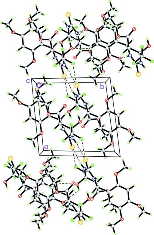 The packing of the title compound in the unit cell viewed down the c axis, with hydrogen bonds shown as dashed lines.