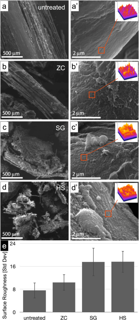 SEM micrographs of biomass particle and cell wall surfaces. (a,a') Control, (b,b') ZC, (c,c') SG, and (d,d') HS. The left column reinforces the particle size reduction and clumping seen at lower resolution in the stereo micrographs. The right column shows changes in surface roughness of the biomass cell walls caused by pretreatment. Surface roughness measurements were calculated as the standard deviation of greyscale values within six selected regions of interest within three different SEM micrographs (orange square, inset). (e) The mean standard deviation of the greyscale values and standard deviation among the 18 surface roughness values is reported. HS, horizontal screw; SEM, scanning electron microscopy; SG, steam gun; ZC, ZipperClave®.
