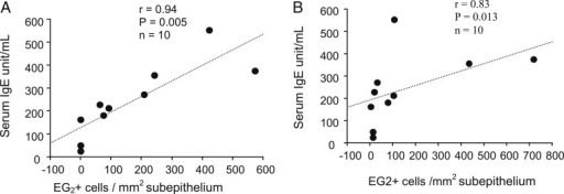 A, B, Correlations between serum IgE levels and counts of subepithelial EG2+ eosinophils in asthma at baseline (A) and d 4 after rhinovirus infection (B) (Spearman rank correlation).