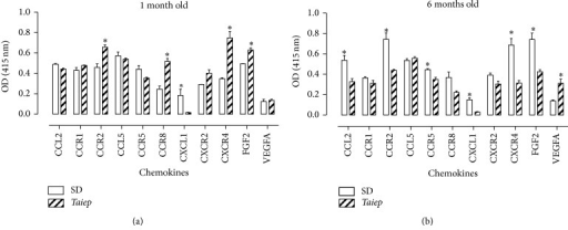 Protein levels of chemokines and their receptors in the brainstem of Sprague-Dawley (SD) and taiep rats. Chemokines, receptors, and growth factors were assayed using indirect ELISA. Each value represents the mean ± SEM of 5 independent experiments made in triplicate. ∗Significantly different from SD rats (Student's t-test). The significance was established at P < 0.05.