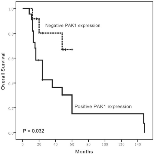 Overexpression of PAK1 influences survival in PESCC patients. PESCC patients showing overexpression of PAK1 had reduced overall survival.