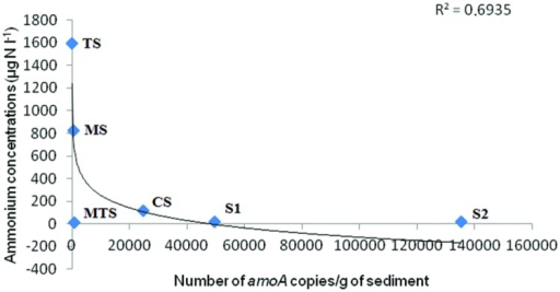 Correlation between ammonium concentrations in the water and the number of AOA amoA copies/g of sediment. The r2-values are indicated in the plot.