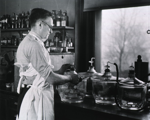 <p>Half-length, standing at laboratory table, preparing organic compounds used in cancer research; right profile; wearing glasses.</p>