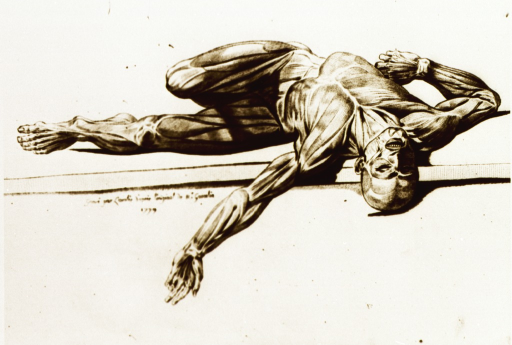 <p>Full length view of human figure lying on his back and twisted to left at the waist; head (at right) and left arm extend over edge of platform; left leg extended (at left), right leg bent at the knee; full body musculature defined.</p>