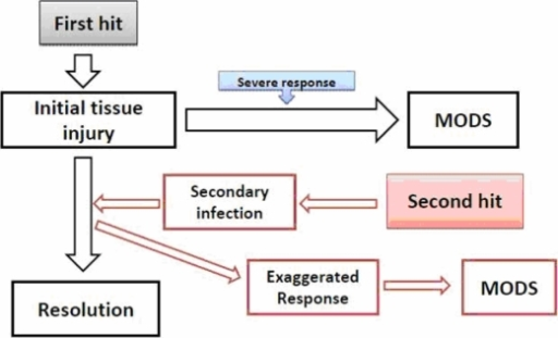 The 'one-hit' and 'two-hit' paradigm of traumatic injury. 'One hit' represents the initial, massive tissue injury and shock and SIRS along with remote organ injury. The 'second hit' refers to the less intense SIRS that normally resolves but leaves the patient vulnerable to a secondary inflammatory hit that can reactivate the SIRS and precipitate late MODS.