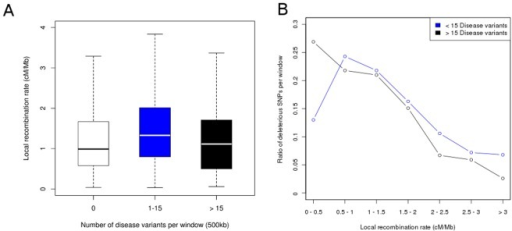 Enrichment of disease variants in regions of low recombination.(A) Boxplots displaying local recombination rates for sliding windows of 500 kb harboring a different number of disease variants (0, 1–15,>15). (B) Ratio of windows showing an enrichment of disease variants (>15 disease variants) compared to windows without such a clustering (<15 disease variants) for different bins of local recombination rates.