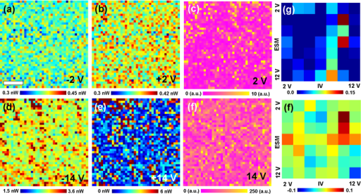 Spatial maps of (a, d) negative I-V loop area, (b, e) positive I-V loop area, and (c, f) ESM loop area for (a–c) 2 V and (d–f) 14 V, respectively. Correlation between ESM loop area and I-V loop area for (g) negative and (h) positive biases.