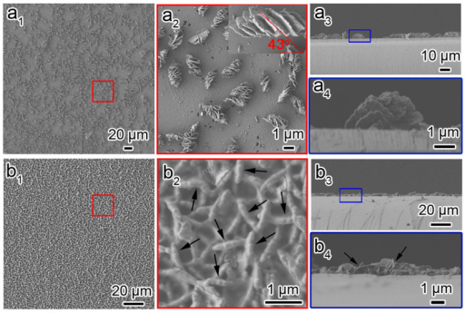 Macroscopic helical morphologies of CDSFs.Top view and side view of the low- and high-magnification SEM images of CDSFs formed on the silicon substrates without pretreatment (a1–4) and with H2SO4/H2O2 pretreatment (b1–4) showing the impeller-like helical architecture composed of several blades grown on the substrate. The molar composition of the synthesis gel was DNA (phosphate group):Mg2+:TMAPS:TEOS:H2O = 1:1.5:6:15:18 000.