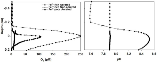 In-situ O2 and pH microprofiles in cyanobacterial biofilms from aerated and non-aerated Fe2+-rich and aerated Fe2+-poor reactors. All profiles were measured under similar irradiance as that used during long-term incubations of the reactors. Measurements in the biofilm from the aerated Fe2+-poor reactor were conducted outside of the reactor using the natural water purged with N2 gas to maintain anoxic conditions.