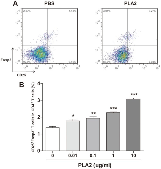 Increase of the Treg population in splenocytes by PLA2.Splenocytes from Foxp3EGFP mice were treated with various concentrations of PLA2 and PBS for three days. The flow cytometry data showed a population of Tregs in the groups of PBS-treated and PLA2 (10 µg/ml)-treated CD4+ T cells (A). The populations of CD25+Foxp3+ T cells treated with various concentrations of PLA2 are depicted as percentages of the total CD4+ T cells (B). The values shown indicate the means ± S.E.M. *P<0.05 vs. PBS, **P<0.01 vs. PBS, ***P<0.01 vs. PBS.