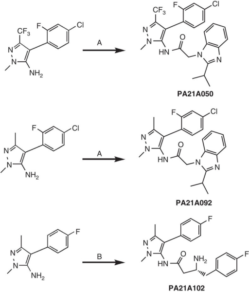 Synthetic schemes and reaction conditions for pyrazoleamides.(a) For PA21A050 and PA21A092: 2-(2-isopropyl-1H-benzo[d]imidazol-1-yl)acetic acid, Mukaiyama's reagent (2-chloro-1-methylpyridinium iodide), triethylamine, in dichloromethane/tetrahydrofuran, microwave, 75 °C, 30 min. (b) For PA21A102: (i) Fmoc-(R)-3-amino-4-(4-fluorophenyl)butanoyl chloride in dichloromethane, (ii) DBU (1,8-diazabicyclo[5.4.0]undec-7-ene) in ethyl acetate.