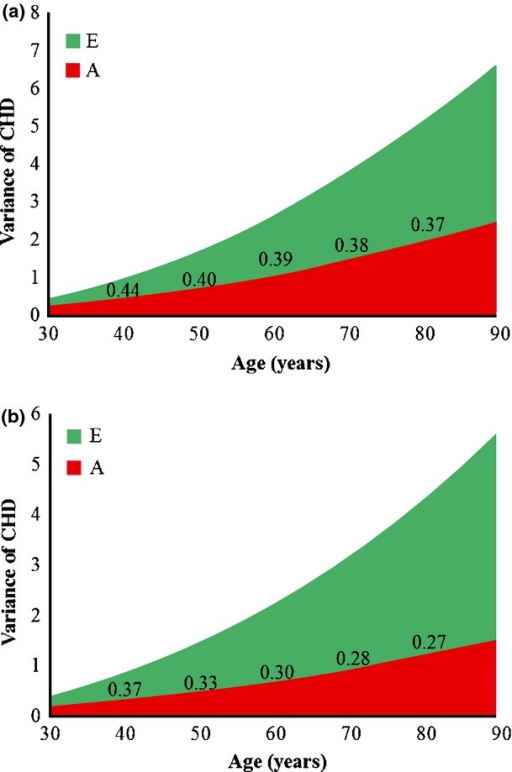 Genetic variance (A), nonshared environmental variance (E) and heritability of CHD as a function of age in men (a) and women (b). Each unit on the x-axis represents age. Heritability of CHD, as a proportion of the total variance, is shown in the figure for selected ages (40, 50, 60, 70 and 80 years). CHD, coronary heart disease.
