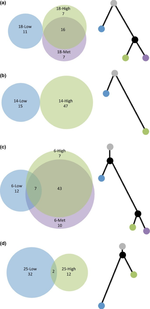The molecular relationship of coincident foci. Venn diagrams (left) depicting the pattern of shared and private high-confidence somatic mutations and phylogenetic trees (right) depicting the relationship of coincident foci for PrCa 18 (a), PrCa 14 (b), PrCa 6 (c) and PrCa 25 (d). The number of high-confidence somatic mutations is labeled within each Venn diagram. In (c), there are no mutations that are shared between the low-grade focus and the metastatic focus and also not shared with the high-grade focus. Within each phylogenetic tree, branch length is proportional to the number of mutations. Gray, uninvolved prostate; blue, low-grade focus; green, high-grade focus; purple, metastatic focus; black, theoretical common progenitor.