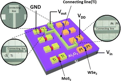 Device structure with electrical connections. Schematic illustration and optical microscopy image of a MoS2/WSe2 complementary inverter with electrical connections that were used to measure the electrical characteristics.