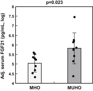Serum FGF21 concentrations in MHO and MUHO subjects Data adjusted for gender, age, and BMI are shown as log-transformed individual data and means ± SD (N = 10 per group). Adjustment was performed by multiple linear regression modeling. MHO – metabolically healthy obesity; MUHO – metabolically unhealthy obesity.