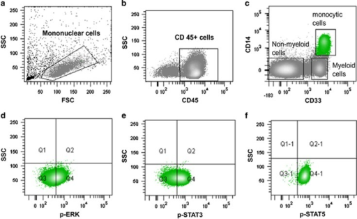 Mononuclear cells were identified on the basis of physical parameters (a) and then selected according to their CD45 reactivity (b). Within the CD45+ cells, monocytes (in green), non-myeloid and myeloid cells could be distinguished by means of their CD33 and CD14 reactivity (c). Phosphoprotein expression was then measured on monocytic gated cells (d–f).