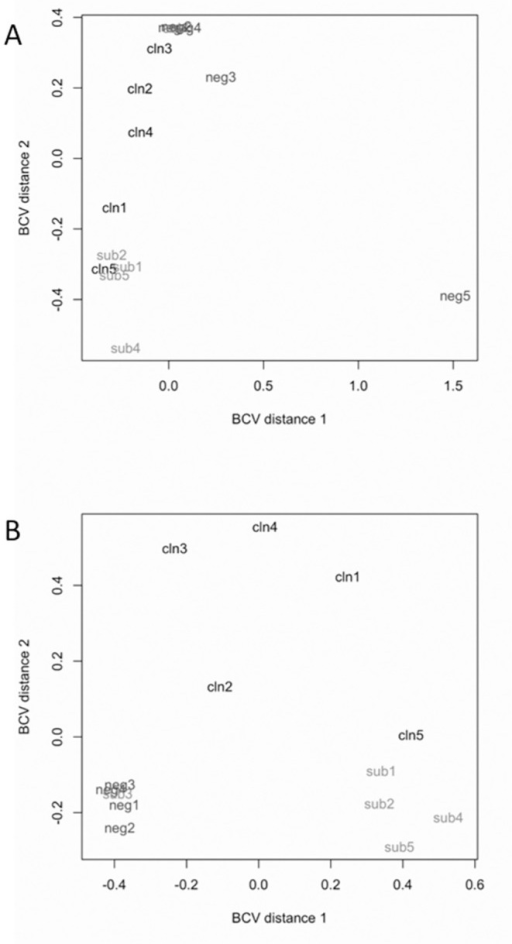 Multidimensional scaling plots of samples from uninfected control, subclinical, and clinical animals based on RNA-seq data.Distance 1 and distance 2 separate all samples based on the expression values of all 12,133 genes that passed filtering criteria prior to differential gene expression analysis. A) Comparison of all 15 samples. B) Comparison of 14 samples after the removal of uninfected control animal 5 (Cow #8102).