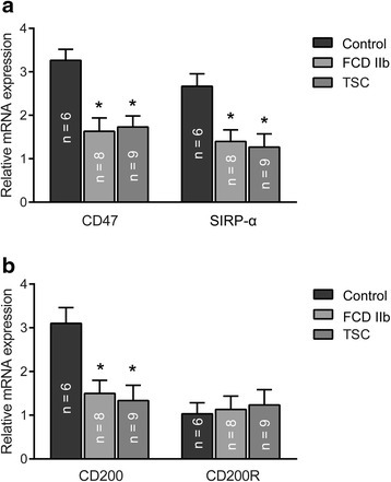 Messenger RNA expression of CD47, SIRP-α, CD200, and CD200R in control, FCD IIb, and TSC specimens. Quantitative real-time PCR analysis showed that the mRNA levels of CD47 (a) and its receptor SIRP-α (a) and CD200 (b) were significantly decreased in FCD IIb and TSC compared with control specimens, while CD200R (b) mRNA level was not significantly changed. There were no significant differences in CD47, CD200, and their receptors between FCD IIb and TSC specimens. The bar charts represent mean ± SD, *P < 0.05, FCD IIb, TSC versus controls, Kruskal–Wallis test, and Bonferroni correction