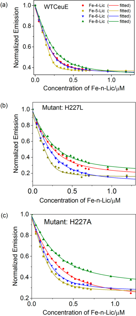 Selected fluorescence quenching data for binding to (a) CeuE (b) mutant H227L and (c) mutant H227A. Fe-4-Lic (red circles), Fe-5-Lic (gold squares), Fe-6-Lic (blue inverted triangles) and Fe-4-Lic (green triangles) (240 nM protein in 40 mM TrisHCl pH 7.5, NaCl 150 mM).