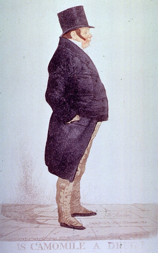 <p>Stout elderly man stands in profile to the right; wearing top hat and long gaiters.  Identified as Mr. Boaden, i.e. Mr. Bowden.</p>