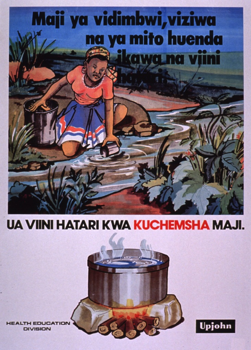 <p>Multicolor poster.  Title at top of poster addresses water from ponds, lakes, or rivers, and danger.  Dominant visual image is an illustration of a woman dipping a cup into a stream or river.  She has a large container beside her.  Caption below illustration urges boiling water to avoid danger.  Illustration of a steaming pot of water atop a fire below caption.  Publisher information at bottom of poster.</p>