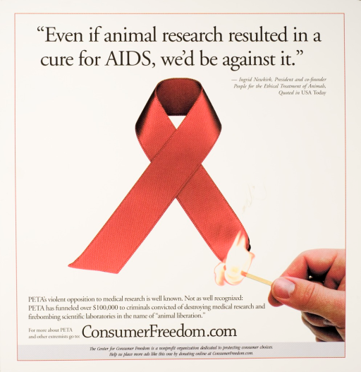 <p>Predominatly white poster with black lettering. Visual image in center of poster is a red AIDS ribbon. A hand holds a lit match to the bottom right of the ribbon. Title above image. Publisher Web site at bottom of poster.</p>