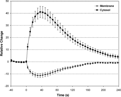 Kinetics of bradykinin-induced PH-GFP translocation. The average changes in membrane and cytosol fluorescence after addition of 1 μM bradykinin are plotted versus time. Each point was the mean ± SEM of 19 experiments.