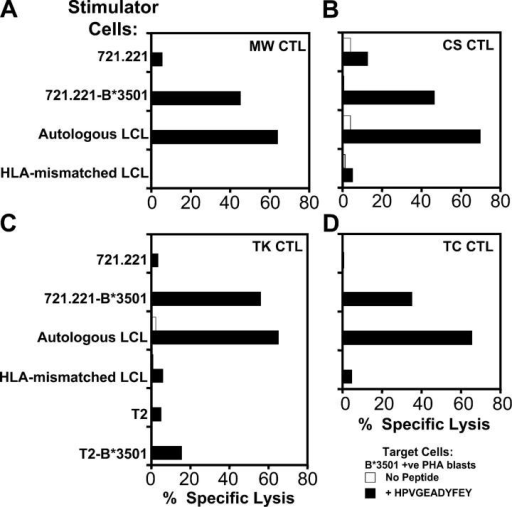 Direct stimulation of EBNA1-specific CTL responses in vitro using LCL stimulators. CTL bulk cultures were generated from the HLA B*3501+ EBV-seropositive donors MW, CS, TK, and TC by incubating PBMCs with irradiated LCLs (responder/stimulator ratio of 20:1). CTL cultures were split and restimulated with additional irradiated LCLs on day 7. Stimulator cells were the class I− LCL 721.221, HLA B*3501-transfected 721.221 cells, the autologous LCL for each donor, or an LCL from the B*3501− donor DM. CTL cultures were also generated from donor TK after stimulation with the T2 cell line or B*3501-transfected T2 cells. On day 10, each CTL bulk culture was screened in chromium release assays for lysis of HLA B*3501+ PHA blasts that had been pretreated with 1 μM of the HPV peptide for 1 h or left untreated. An E/T ratio of 20:1 was used in each of these assays. These data are a representation of two separate experiments.