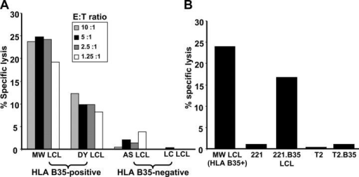 CTL recognition of endogenously processed EBNA1 epitopes. (A) HLA B35+ and HLA B35− LCLs were used as targets in a standard 51Cr-release assay to assess endogenous processing of EBNA1. (A) A CTL clone specific for the HLA B35-binding HPVGEADYFEY epitope was added to target cells at the E/T ratios indicated. (B) An HLA B35+ LCL, 721.221 LCLs, 721.221 LCLs transfected with HLA B*3501, T2 LCLs, and T2 LCLs transfected with HLA B*3501 were used as targets in a standard 51Cr-release assay to assess CTL activity to an HPVGEADYFEY-specific CTL clone at an E/T ratio of 5:1. These data are a representation of three separate experiments.