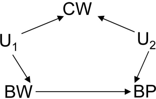 DAG showing where birth weight (BW) has a direct effect on blood pressure (BP) and shares an unmeasured common cause (U1) with current weight (CW) which itself has another unmeasured common cause (U2) with BP.