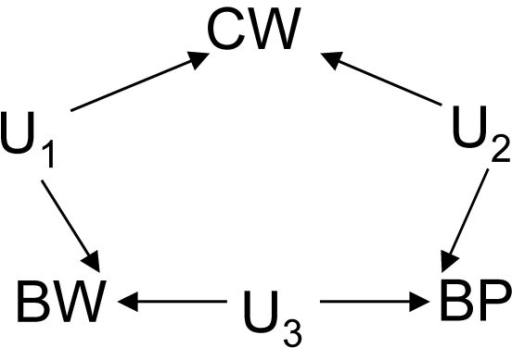 DAG depicting each variable pair – BW/CW, CW/BP, or BW/BP – as being connected only by an unmeasured common cause (U1, U2 or U3 respectively).