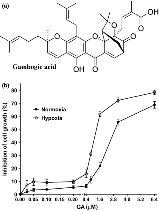 Effect of gambogic acid (GA) on the cytotoxicity against myeloma U266 cells. (a) The chemical structure of GA. (b) U266 cells were treated with various concentrations of GA for 8 h under normoxia and hypoxia condition. Cell viability was detected by CCK8 assay. Bars are the mean ± SD (n = 3).