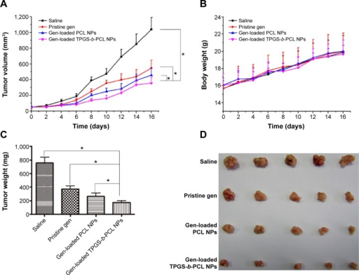 Antitumor effect of genistein formulated in TPGS-b-PCL in comparison with pristine genistein and genistein-loaded PCL NPs (n=5).Notes: (A) Tumor growth curve of the BALB/c nude mice bearing HeLa cells xenograft after administration (*P<0.05); (B) body weight after administration; (C) weight of the tumor from each group taken out from the sacrificed mice at the end of the study (*P<0.05); (D) image of tumor from each group taken out from the sacrificed mice at the end of the study.Abbreviations: NPs, nanoparticles; PCL, poly(ε-caprolactone); TPGS, d-α-tocopheryl polyethylene glycol 1000 succinate.